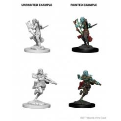 Dungeons and Dragons Nolzurs Marvelous Miniatures - Air Genasi Female Rogue