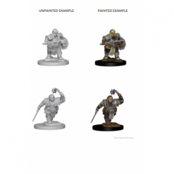 Dungeons and Dragons Nolzurs Marvelous Miniatures - Dwarf Female Fighter