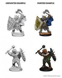 Dungeons and Dragons: Nolzurs Marvelous Miniatures - Dragonborn Male Paladin