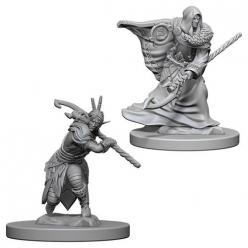 Dungeons and Dragons: Nolzurs Marvelous Unpainted Miniatures - Elf Male Druid