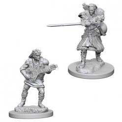 Dungeons and Dragons: Nolzurs Marvelous Unpainted Miniatures - Human Male Bard