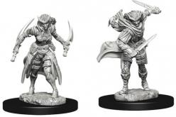 Dungeons and Dragons: Nolzurs Marvelous Unpainted Miniatures - Tiefling Female Rogue