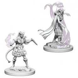 Dungeons and Dragons: Nolzurs Marvelous Unpainted Miniatures - Tiefling Female Sorcerer
