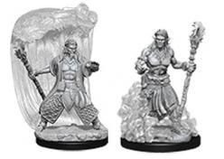 Dungeons and Dragons: Nolzurs Marvelous Unpainted Miniatures - Water Genasi Male Druid