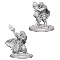 Dungeons and Dragons: Nolzurs Marvelous Unpainted Miniatures - Dwarf Female Wizard