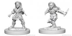 Dungeons and Dragons: Nolzurs Marvelous Unpainted Miniatures - Halfling Female Rogue