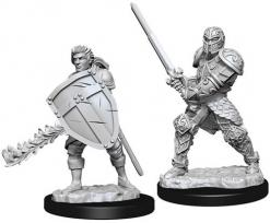 Dungeons and Dragons: Nolzurs Marvelous Unpainted Miniatures - Male Human Fighter